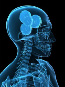 neurologie-nice